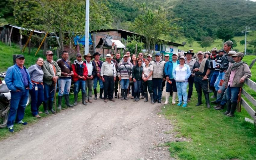 A lomo de mula llega la electricidad a vereda montañosa cercana a Buga, Valle del Cauca